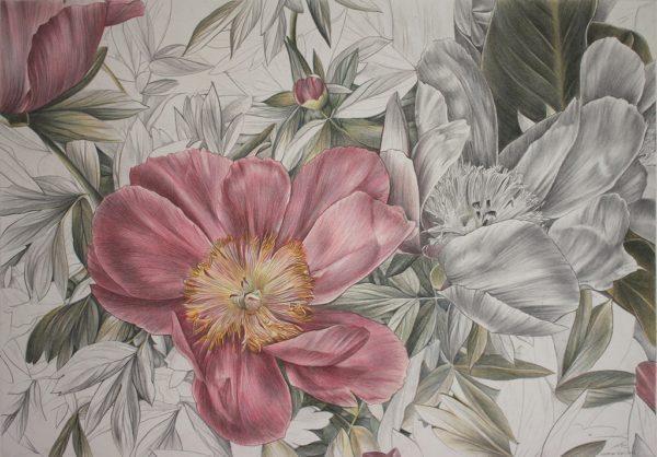 Cristina Iotti, Armonia, 2018, matite colorate, matita, acquerello su carta, cm 40x57
